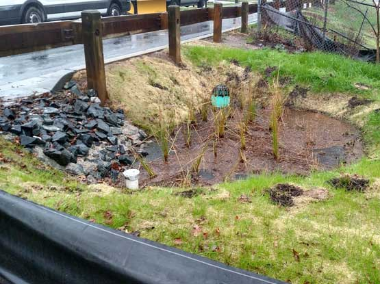 Bioretention & RSC Stream Restoration