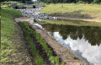 Stormwater Pond Wetland Bench